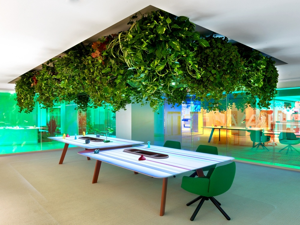 New Day Office - biophilic design ideas