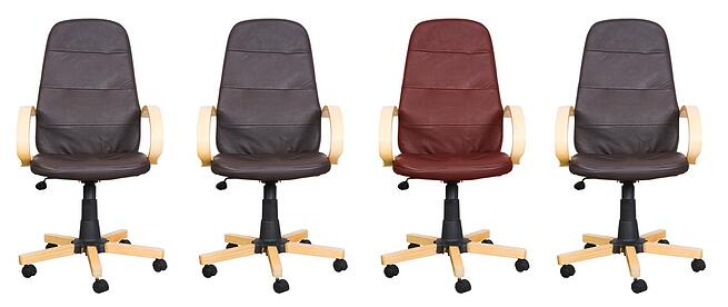 business leather chairs - stand out from the crowd Clipping path of the red backrest so you can change the colour of it easily..jpeg