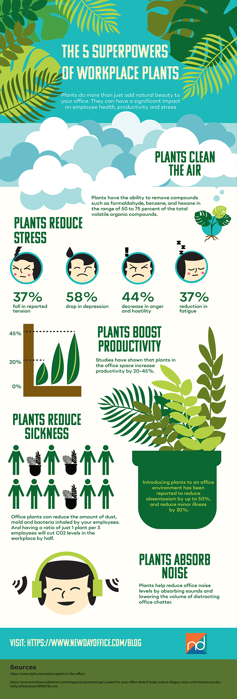 New Day Office - The 5 Superpowers of Workplace Plants